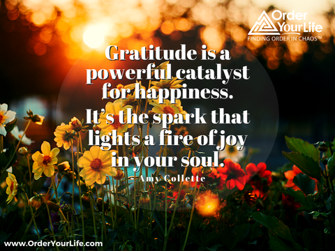 Gratitude is a powerful catalyst for happiness. It's the spark that lights a fire of joy in your soul. ~ Amy Collette