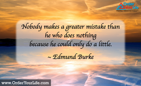 Nobody makes a greater mistake than he who does nothing because he could only do a little. ~ Edmund Burke