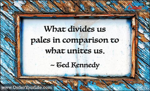 What divides us pales in comparison to what unites us. ~ Ted Kennedy