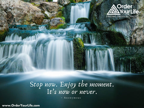 Stop now. Enjoy the moment. It's now or never. ~ Anonymous