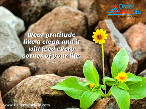 Wear gratitude like a cloak and it will feed every corner of your life. ~ Rumi