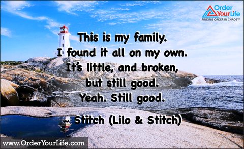 This is my family. I found it all on my own. It's little, and broken, but still good. Yeah. Still good. ~ Stitch (Lilo & Stitch)