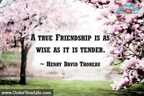 A true Friendship is as wise as it is tender. ~ Henry David Thoreau