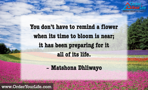 You don't have to remind a flower when its time to bloom is near; it has been preparing for it all of its life. ~ Matshona Dhliwayo