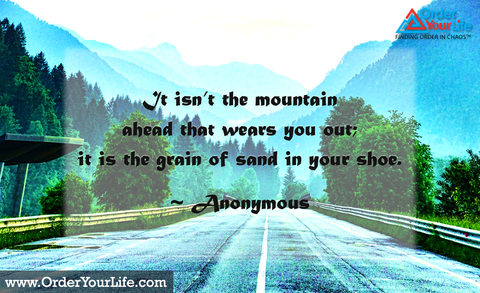 It isn't the mountain ahead that wears you out; it is the grain of sand in your shoe. ~ Anonymous