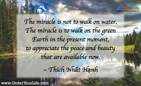 The miracle is not to walk on water. The miracle is to walk on the green Earth in the present moment, to appreciate the peace and beauty that are available now. ~ Thích Nhất Hạnh