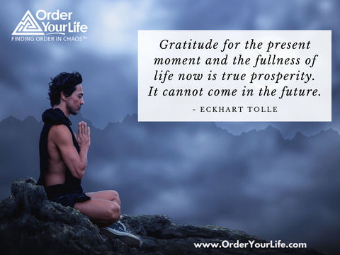 Gratitude for the present moment and the fullness of life now is true prosperity. It cannot come in the future. ~ Eckhart Tolle