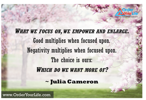 What we focus on, we empower and enlarge. Good multiplies when focused upon. Negativity multiplies when focused upon. The choice is ours: Which do we want more of? ~ Julia Cameron