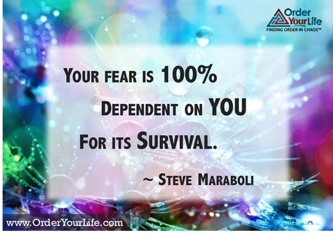 Your fear is 100% dependent on you for its survival. ~ Steve Maraboli