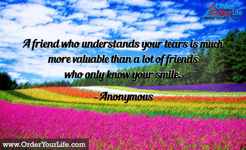 A friend who understands your tears is much more valuable than a lot of friends who only know your smile. ~ Anonymous