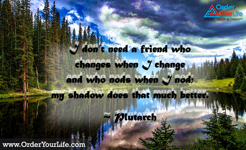 I don't need a friend who changes when I change and who nods when I nod; my shadow does that much better. ~ Plutarch