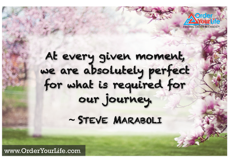 At every given moment, we are absolutely perfect for what is required for our journey. ~ Steve Maraboli