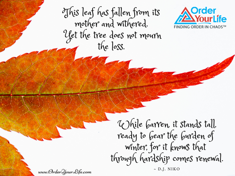 This leaf has fallen from its mother and withered. Yet the tree does not mourn the loss. While barren, it stands tall, ready to bear the burden of winter, for it knows that through hardship comes renewal. ~ D.J. Niko