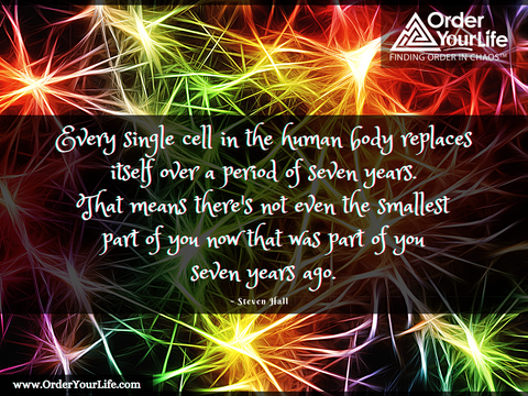 Every single cell in the human body replaces itself over a period of seven years. That means there's not even the smallest part of you now that was part of you seven years ago. ~ Steven Hall