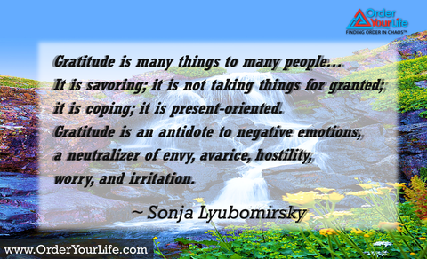 Gratitude is many things to many people…It is savoring; it is not taking things for granted; it is coping; it is present-oriented.  Gratitude is an antidote to negative emotions, a neutralizer of envy, avarice, hostility, worry, and irritation. ~ Sonja Lyubomirsky