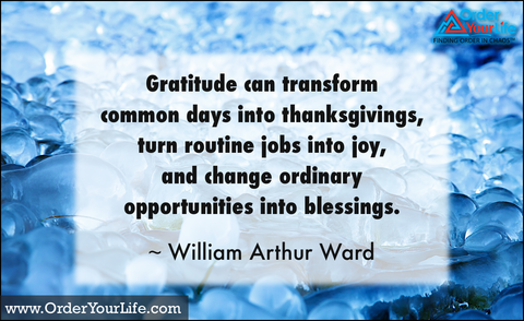Gratitude can transform common days into thanksgivings, turn routine jobs into joy, and change ordinary opportunities into blessings. ~ William Arthur Ward