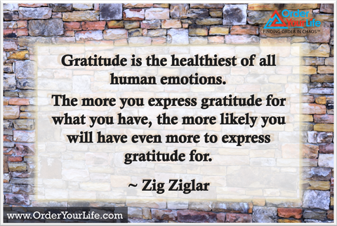 Gratitude is the healthiest of all human emotions. The more you express gratitude for what you have, the more likely you will have even more to express gratitude for. ~ Zig Ziglar