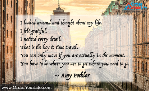 I looked around and thought about my life. I felt grateful. I noticed every detail. That is the key to time travel. You can only move if you are actually in the moment. You have to be where you are to get where you need to go. ~ Amy Poehler