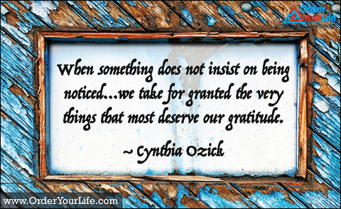 When something does not insist on being noticed…we take for granted the very things that most deserve our gratitude. ~ Cynthia Ozick