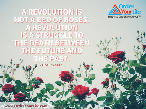 A revolution is not a bed of roses. A revolution is a struggle to the death between the future and the past. ~ Fidel Castro