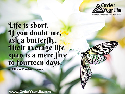 Life is short. If you doubt me, ask a butterfly. Their average life span is a mere five to fourteen days. ~ Ellen DeGeneres