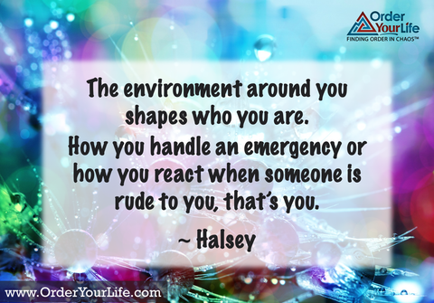 The environment around you shapes who you are. How you handle an emergency or how you react when someone is rude to you, that's you. ~ Halsey