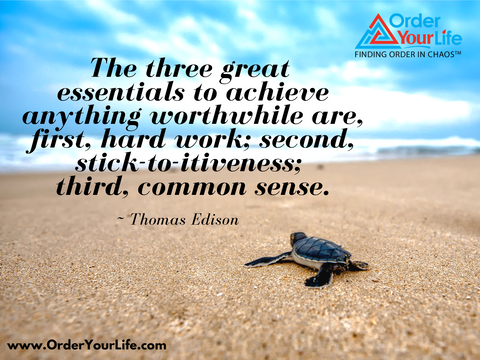 The three great essentials to achieve anything worthwhile are, first, hard work; second, stick-to-itiveness; third, common sense. ~ Thomas Edison