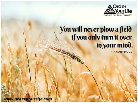 You will never plow a field if you only turn it over in your mind. ~ Anonymous