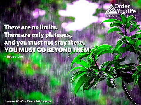 There are no limits. There are only plateaus, and you must not stay there, you must go beyond them. ~ Bruce Lee