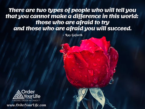 There are two types of people who will tell you that you cannot make a difference in this world: those who are afraid to try and those who are afraid you will succeed. ~ Ray Goforth