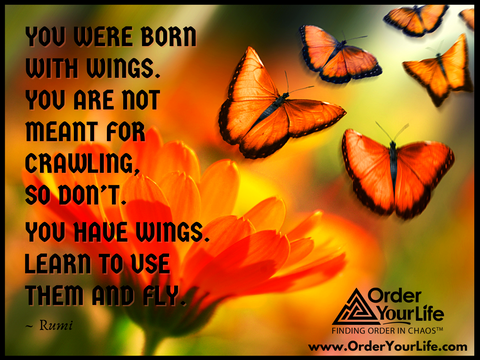 You were born with wings. You are not meant for crawling, so don't. You have wings. Learn to use them and fly. ~ Rumi