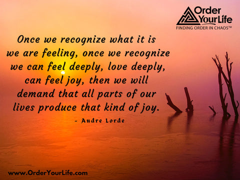 Once we recognize what it is we are feeling, once we recognize we can feel deeply, love deeply, can feel joy, then we will demand that all parts of our lives produce that kind of joy. ~ Audre Lorde