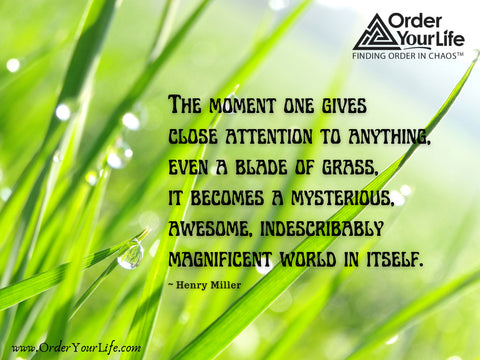 The moment one gives close attention to anything, even a blade of grass, it becomes a mysterious, awesome, indescribably magnificent world in itself. ~ Henry Miller