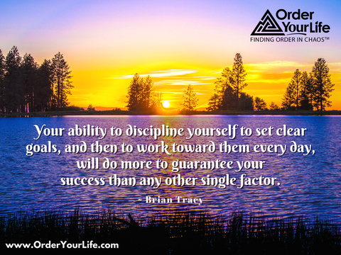 Your ability to discipline yourself to set clear goals, and then to work toward them every day, will do more to guarantee your success than any other single factor. ~ Brian Tracy