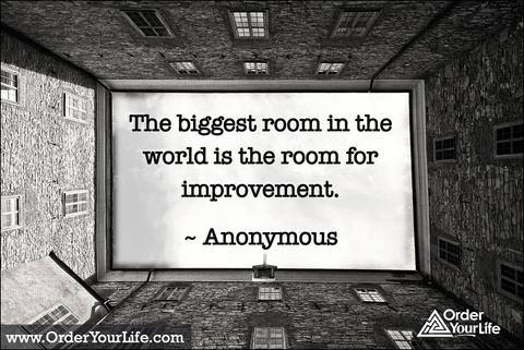The biggest room in the world is the room for improvement. ~ Anonymous
