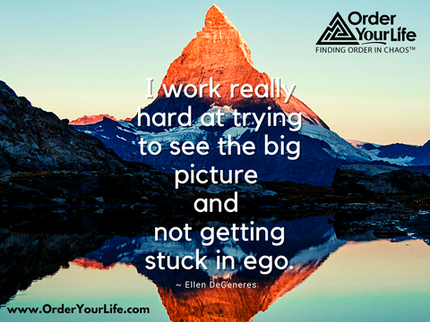 I work really hard at trying to see the big picture and not getting stuck in ego. ~ Ellen DeGeneres