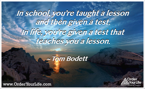 In school, you're taught a lesson and then given a test. In life, you're given a test that teaches you a lesson. ~ Tom Bodett