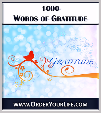100 Words of Gratitude - OrderYourLife.com