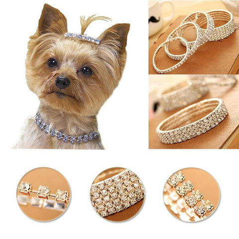 Pet Crystal Choker Collar. Stunning. Collars GreatmyPet