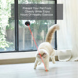 Hand-Free Pet Toy Laser - More Fun More Healthy Cat Toys GreatmyPet