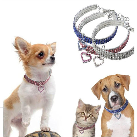 Pet Crystal Collar. One Of A Kind Collars GreatmyPet