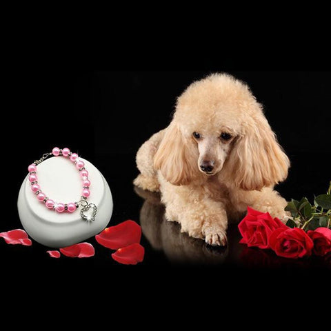 Dog Collar Heart Pendant. Special Edition. Dog Accessories GreatmyPet