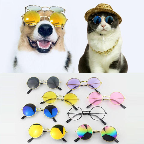 Fashion Sunglasses For Pets Pet Sunglasses GreatmyPet
