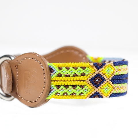 THE DOG COLLARS -Xsmall
