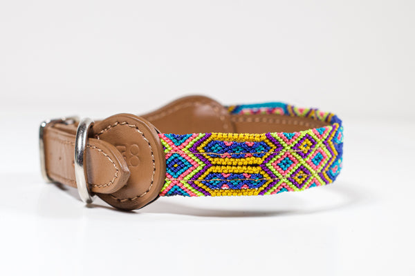 Colourful dog collar - Small eb6