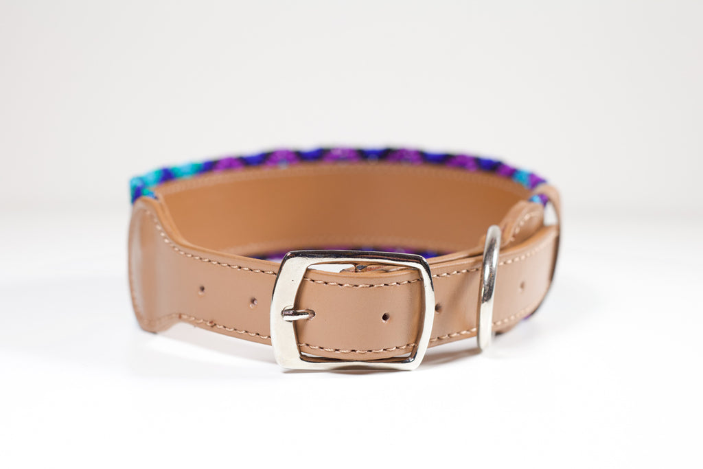 Blue and purple dog collar, Rolig Hundhalsband blå och lila,