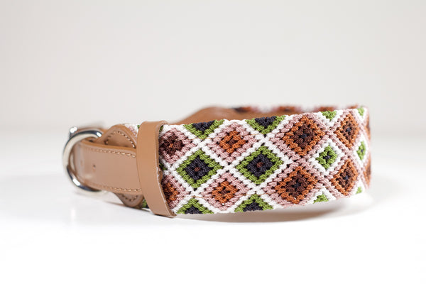 hundhalsband rolig, colourful dog collar, fundog