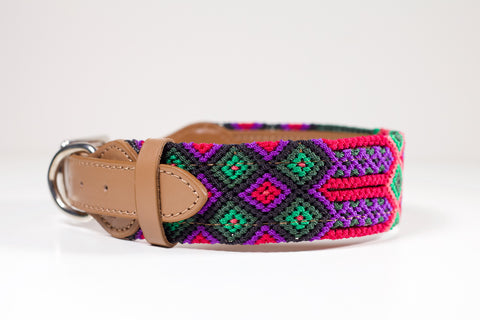 Colourful dog collars - Large gpb9