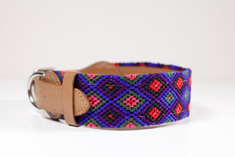 Colourful dog collars - Large pb10