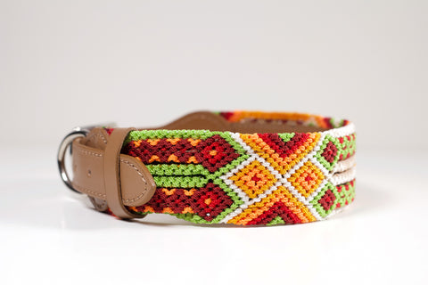 Colourful dog collars - Large yb8